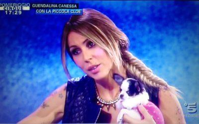 Celebrities: Guendalina Canessa con la piccola Chihuahua Borchia in Prince and Princess a Pomeriggio Cinque!