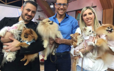 Prince and Princess a Cronache Animali su RAI 2!